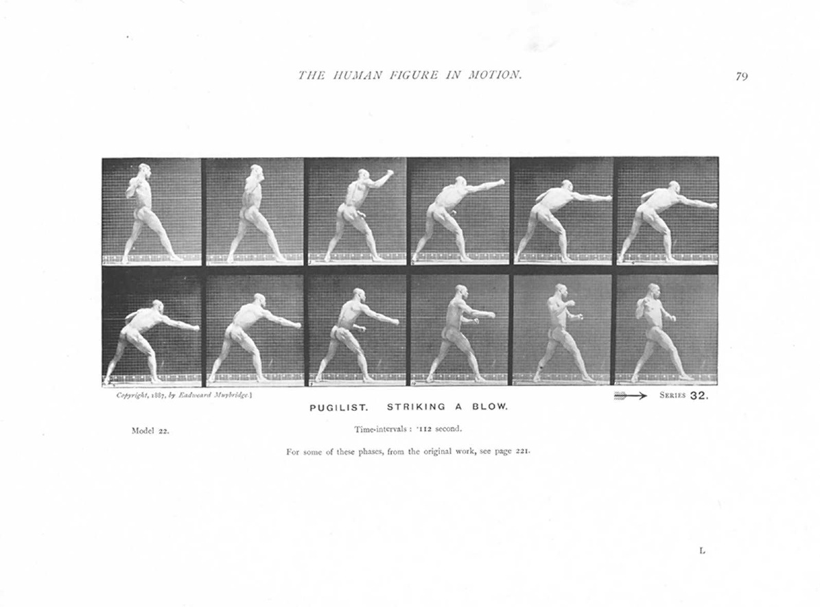 edweard muybridge An accomplished bookseller, inventor, and businessman, eadweard muybridge advanced both technical and aesthetic applications of the photography medium.